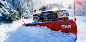 AFFORDABLE SNOW REMOVAL ALLISTON!