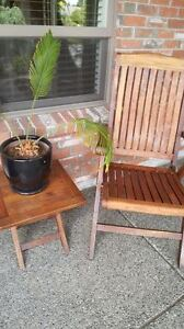 GORGEOUS TEAK chair and table
