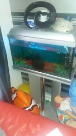 60 litre tropical fish tank