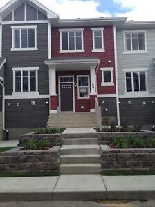 Separate room for rent for Gujarati/Indian Edmonton Edmonton Area image 1