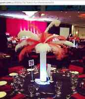 Ostrich feather centerpieces for rent (lowest price guaranteed)
