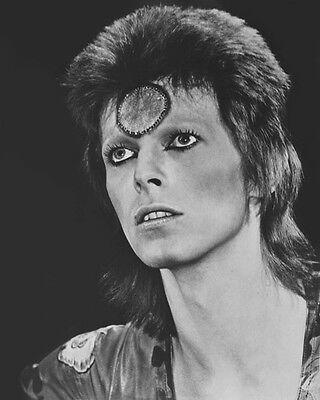 1973 UK Singer DAVID BOWIE Glossy 8x10 Photo Rock Print Ziggy Stardust Poster
