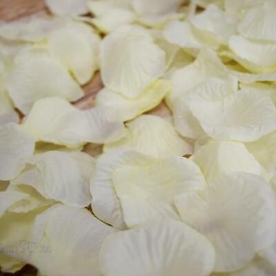 Beige / Ivory Silk Rose Petals Confetti for Weddings in Bulk