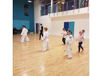 Beginner Taekwon-Do Classes