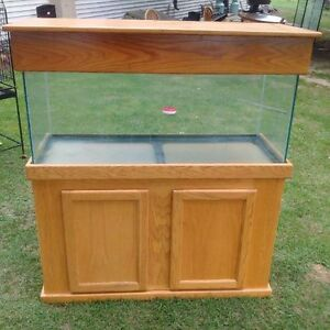 80 Gallon Fish tank with stand and accessories