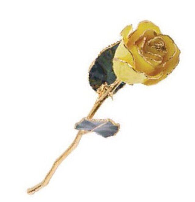 """Yellow Rose with 24K Yellow Gold Trim Real Long Stemmed Rose 12"""" Gift Box"""