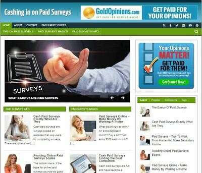 Paid Surveys Wp Blog - Established Profitable Turnkey Wordpress Website For Sale