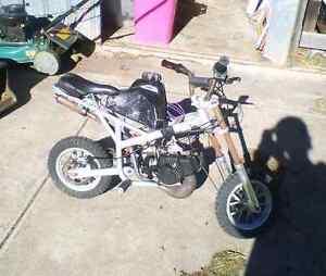Running 50cc dirt pocket rocket Magill Campbelltown Area Preview