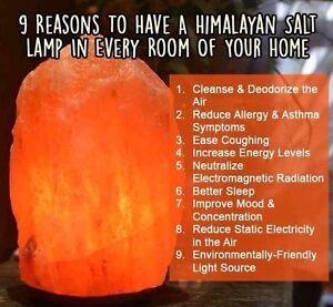 Salt lamps Himalayan Mundijong Serpentine Area Preview