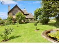 Large 5 bedroom house for rent whit 2 Acres of land
