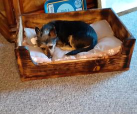Handmade dog beds