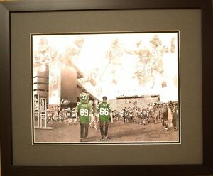 Saskatchewan Roughrider Framed Art