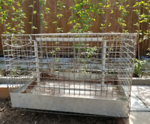 Wire cages with trays for rabbits