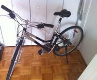 Vélo Miele 7 Vitesses / Miele 7 Speed Bike