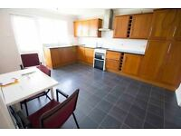 Lovely large double room, garden, large kitchen, free bills