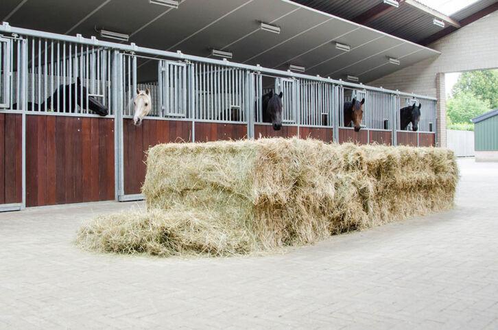Paardenhotel Ekenrode