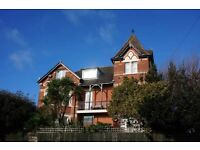 Stunning 3 double bed high spec flat in Alum Chine with sea views, roof garden and hot tub.