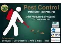 Pests Mice,Bedbugs,Ants,Cockroaches Eradicate & Control Angel,Hackney,Wood Green,Shoreditch,Edmonton