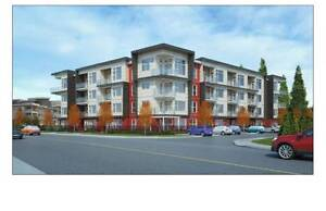 Rent in Nanaimo's Premiere location (never-mind the ocean views)