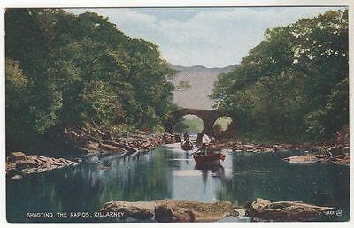 The Rapids - Killarney Photo Postcard c1920 / Ireland