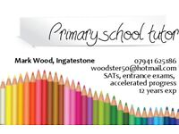 Experienced primary school tutor - Brentwood, Chelmsford and surrounding areas