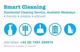 Household/Domestic Cleaner Available