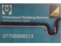 Professional plumbing services!!!!!