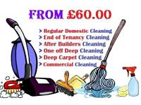 Move out - End of Tenancy clean - free Carpet shampoo wash - £12/h Domestic clean - All London