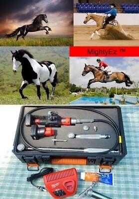 Mightyez Equine Motorized Dental Float Kit