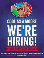 Sales Associate - Cool As A Moose Whistler
