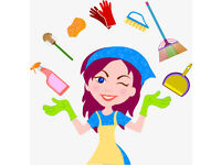Domestic cleaner with green, eco friendly cleaning products