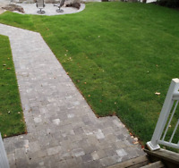 Sod Installs - IT'S NOT TOO LATE!  - Free Quotes!