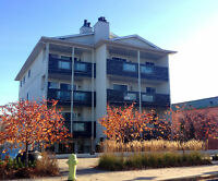 BEACH LIFE AT IT'S FINEST!! 2 bed condo in Sylvan Lake $895/m