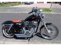 Harley Davidson Sportster 1200V 2012