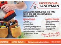 Handyman Professional, Painter and decorator