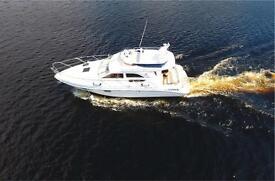 Sealine F33 Sports Cruiser