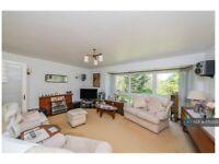 2 bedroom flat in Watford, Watford, WD17 (2 bed) (#1170253)