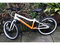 Pinnacle Ash 20 inch child's bike