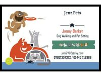 Dog Walking and Pet Sitting Haverhill Suffolk