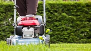 Garden care  hedging trimming mowing Cooranbong Lake Macquarie Area Preview