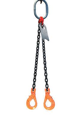 12 10 Foot Grade 80 Dopl Double Leg Lifting Chain Sling Positive Locking Hook