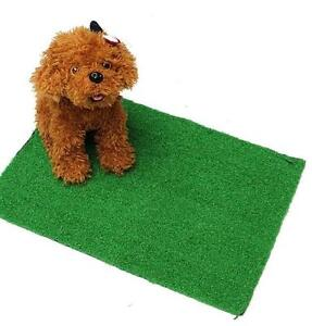 Pet and dog friendly artificial grass 7x7 ft area rugs !!!   Only $79 !!  Shaw synthetic fake grass pet friendly Windsor Region Ontario Preview