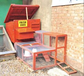 3 Laying Hens plus Hand made coop with detachable cage - built by Me with love in summer 2016