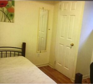 Are you looking for a clean room?