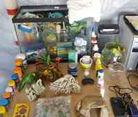 Fish tank and supplies