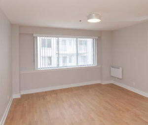 Spacious 3 1/2 apartment for rent in Downtown Montreal