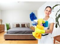 Domestic cleaning/House keeping services