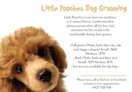 The pampered pup mobile dog grooming grooming gumtree australia little pooches dog grooming carrum downs frankston area preview solutioingenieria Image collections