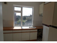 2 female student looking for 2 university students to join 4 bedroom flat located in Elm Grove