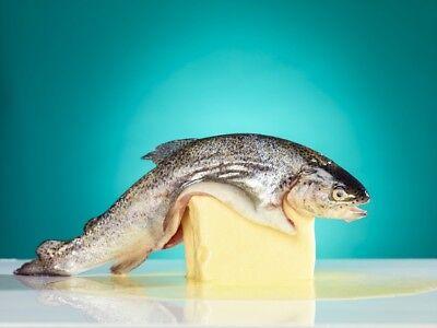 Design - Fischbeidiebudder Fine Art Poster (30x40cm) fisch butter hamburg Kunst Fisch-butter